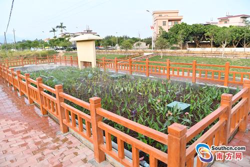河源市源城区明年80%以上农村生活污水将得到有效处理