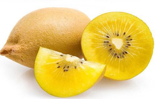 """秋天吃水果还是""""黄""""的好!"""