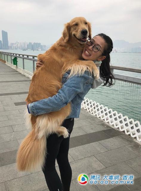 拼搏7年 吴安仪跃升桌球世界第一