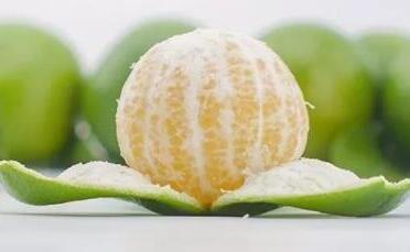 南橘 始兴皇帝柑 24个果精品装