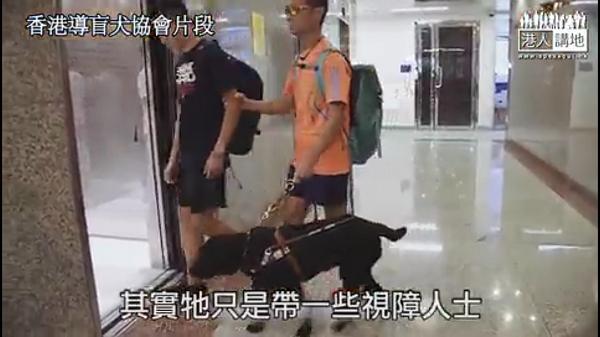 """当""""盲侠""""遇上导盲犬"""
