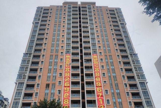 龙湖:丽水雅轩119㎡仅剩高层房源2套