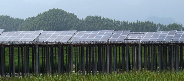 英德首个光伏电站并网发电 年均发电量3200万千瓦时,年均创税600多万元