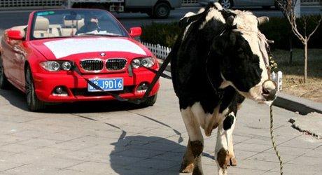 车说第20期:中国特色减配车如何炼成?