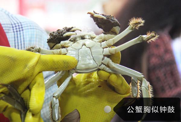 他用大闸蟹追到了女神林青霞