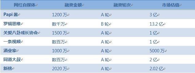 2015-2016年自媒体融资情况表(部分)  制表人:李杨