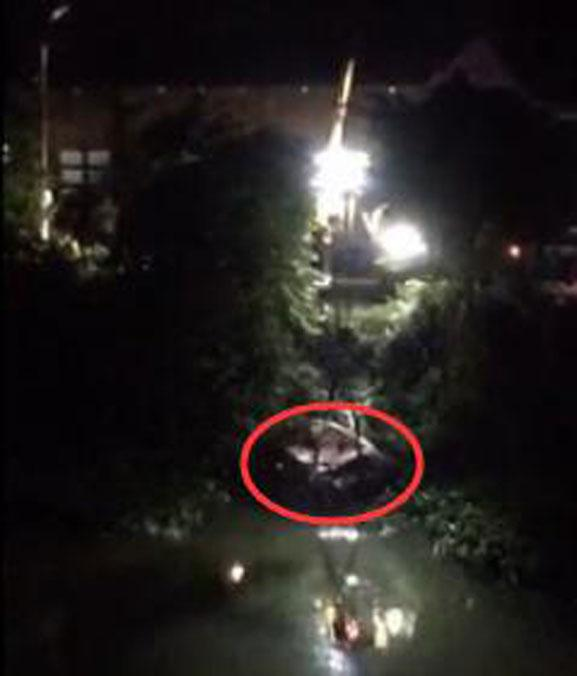 汕头一小车凌晨冲进水沟 车上3名女子遇难