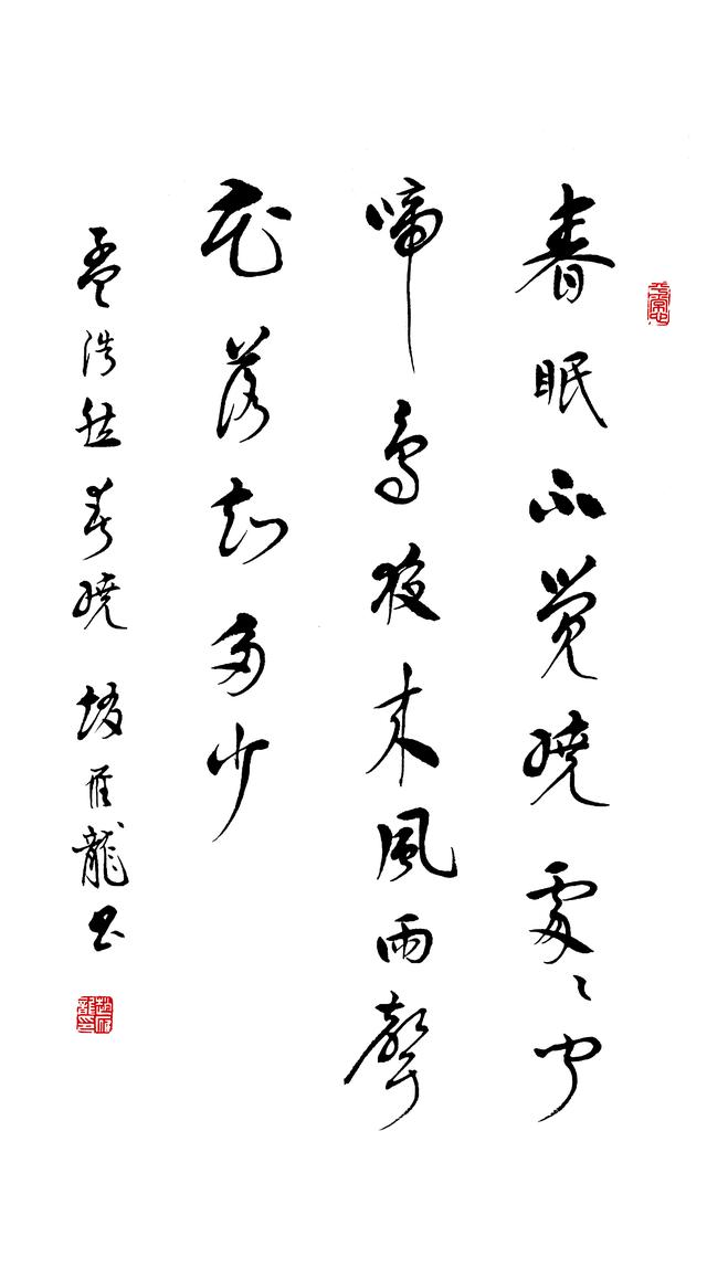 """墨韵陇粤""""赵雁龙先生书法展""""将于11月20号在广东画院盛大开幕"""