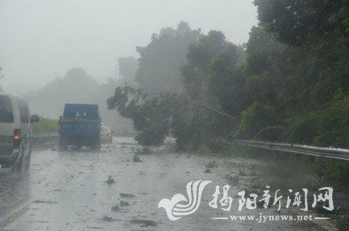 台风天兔正面袭击惠来_强台风天兔正面袭击揭阳惠来仙庵阵风16级
