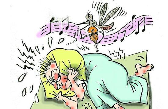 《黄瓜原来是蟑螂克星 高手教你灭蚊虫妙招》 - 宝贝梦的博客