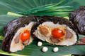 珍贵食材 传统端午粽子