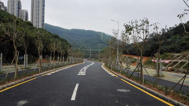 深圳莲塘尾片区市政道路工程(一期)完工