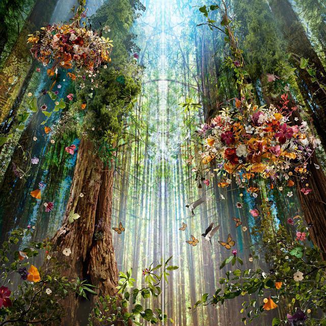 融合自然元素的奇妙世界,复杂美丽的画面让其身临其境