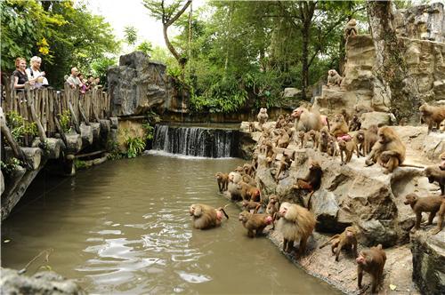 2017年,新加坡野生动物园也成为亚洲唯一一个进入全球排名前5的动物园