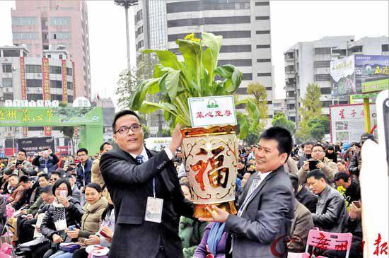 清远菜心拍卖52.8万元成交 打破世界纪录