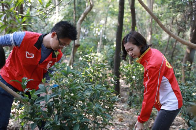 奥运冠军助力腾讯网友植树节