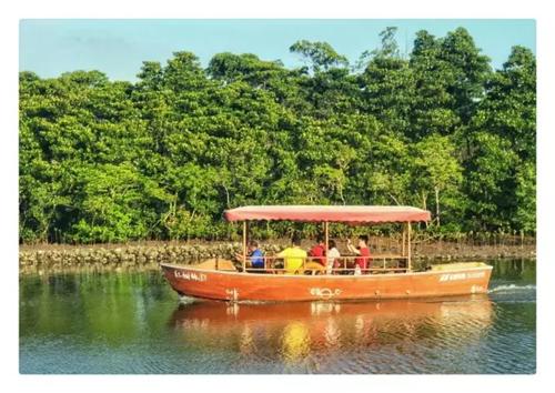假期再长玩不腻  海口7大主题16条线路从早嗨到晚畅享水陆欢