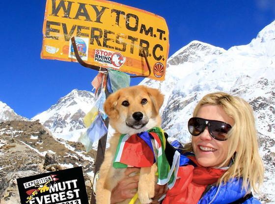 """登顶""""世界之巅""""的明星犬——卢比"""