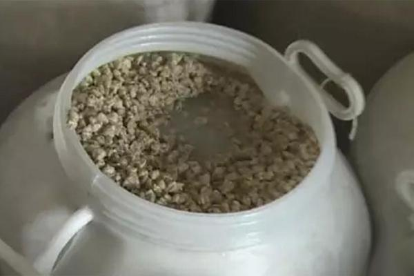 中山黑窝点查封138吨毒蚬肉 在广州市场出售