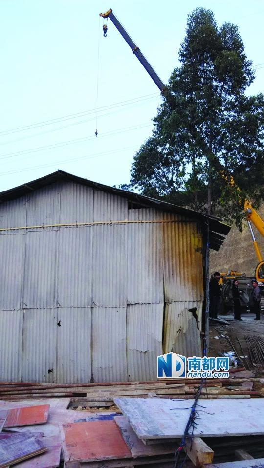 惠州一工人违规操作吊车被电伤