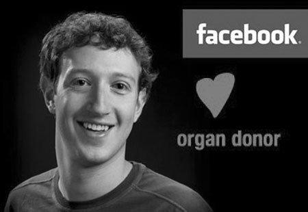 Facebook成最年夜器官捐募信息收集