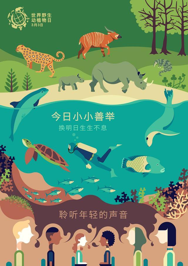 """中国青年在""""世界野生动植物日""""发起保护倡导"""