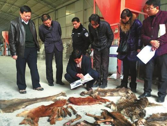 陕西13只野生动物被宰杀 购买人:想让朋友尝鲜