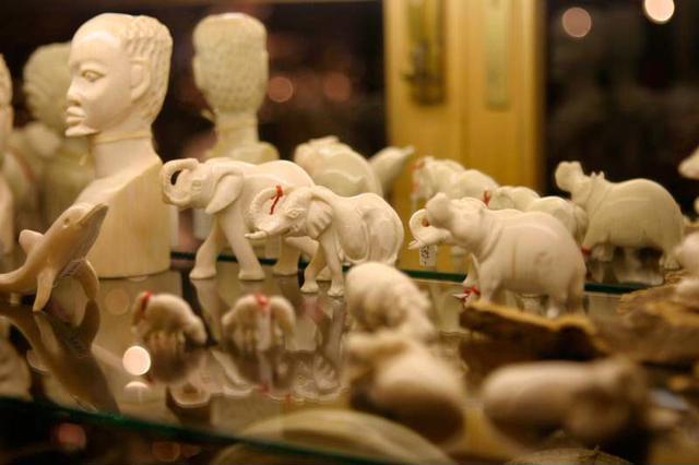 12月31日起买卖象牙即违法 李冰冰等明星助阵公益宣传