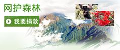 腾讯月捐:每月10元,保护高黎贡山