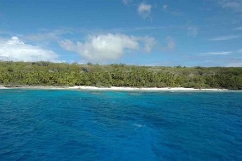 """全球最偏远岛屿成""""垃圾场"""" 打火机牙刷成堆"""
