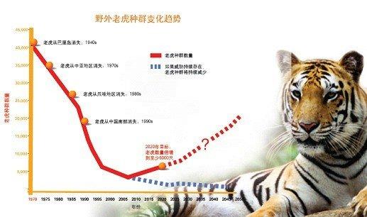 """世界自然基金会""""老虎生存""""计划"""