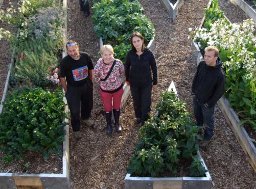 首都种植计划:伦敦的空中菜园