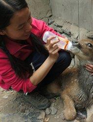 谢晓玲:藏族妇女迈向保护的第一步