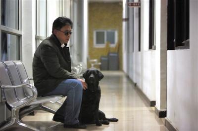 """北京导盲犬""""乔乔""""被送回 身上携纸条""""请求原谅"""""""