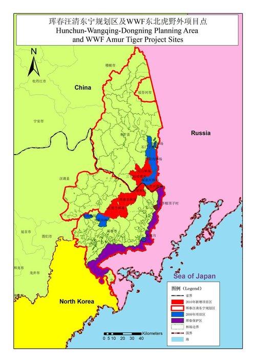 中国野生东北虎栖息地监测巡护面积扩大三倍(图)