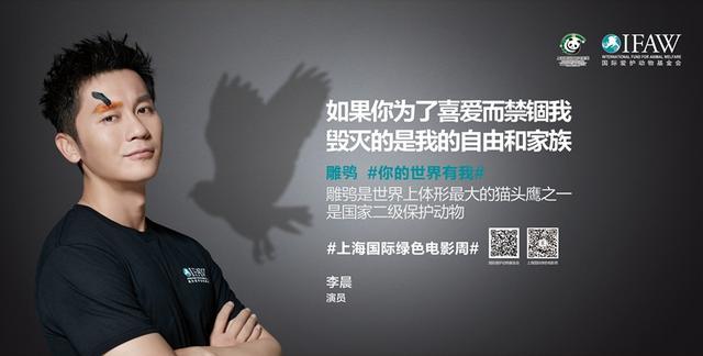 国际爱护动物基金会助力上海国际绿色电影盛事
