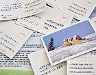 北京海淀区小学 亲手制作环保明信片图片