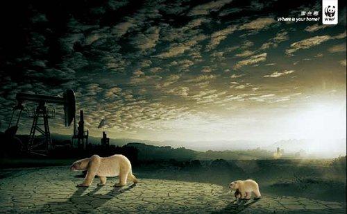 发人深省的动物保护公益广告(图)