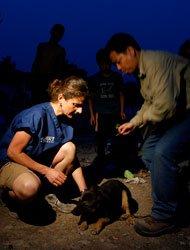 2008年5月,四川汶川特大地震灾难发生之后,IFAW紧急调拨资金并派遣救援团队赶赴四川灾区,与当地政府一起合作成立救援队,为绵竹市遵道镇发放救援物资,并对近千只全职补充接种狂犬疫苗,发放动物食品。