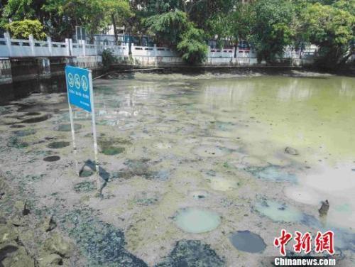 """力度升级!生态环境部出""""狠招""""治理水污染"""