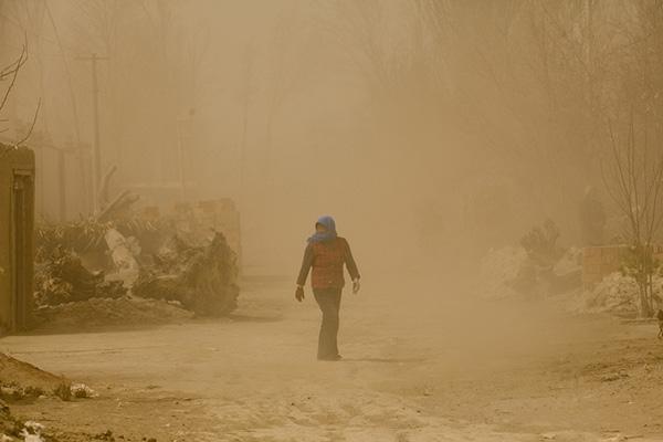 国家林业和草原局局长撰文:防治土地荒漠化,助力脱贫攻坚战
