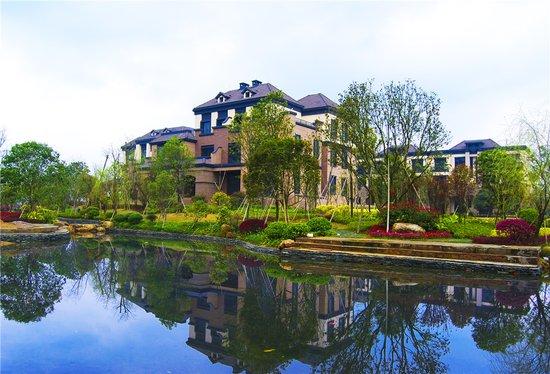 别墅里的梦汇荣湖岛桂林桂林港式别墅帮您实现姜丰别墅回应图片