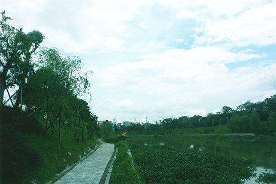 彰泰临桂再开新盘 金桥水岸将为居者带来水景美宅