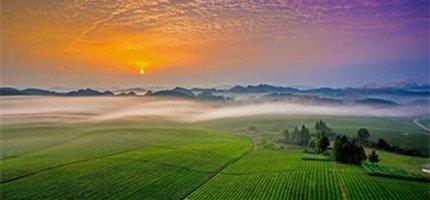 【独家】全国文明村镇评选!贵州有57个村参加