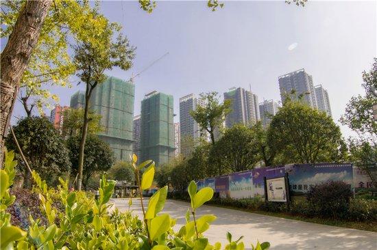 中环国际理想升级 居城市中轴 享惬意生活
