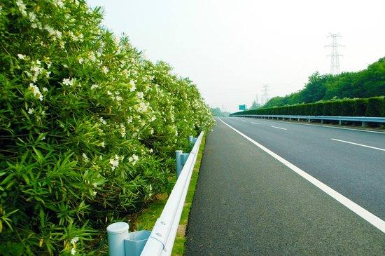 贵州2020年形成绿色公路体系