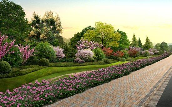 灌木植被平面图手绘