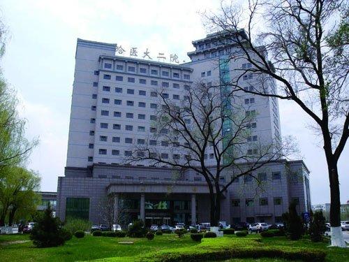 有所医 健康生活 毗邻名医优质盘推荐_频道-哈尔滨