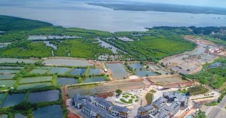文昌:八门湾红树林公园将在10月1日开园