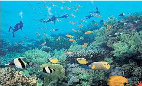 三亚评选出30家旅游标准化示范企业